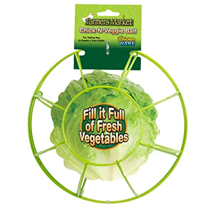 Amazon.com: Ware Manufacturing Chick-N-Veggie Treat Ball: Pet Supplies