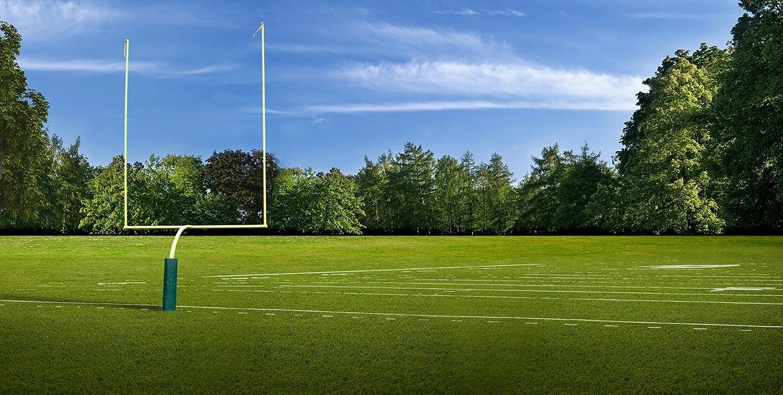 写真バックドロップ – Football – 20 x 10 ft。 – 高品質シームレスなファブリック   B00P1IPEEI