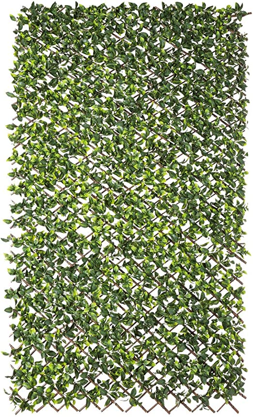 Malla de ocultación Verde para jardín o terraza de 200x100 cm. - LOLAhome: Amazon.es: Jardín