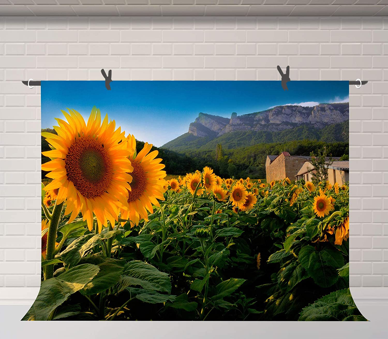 Sunflowers Backdrop Field Scenery Photography Background Photo Props Room Mural FUERMOR 7x5ft LYFU784