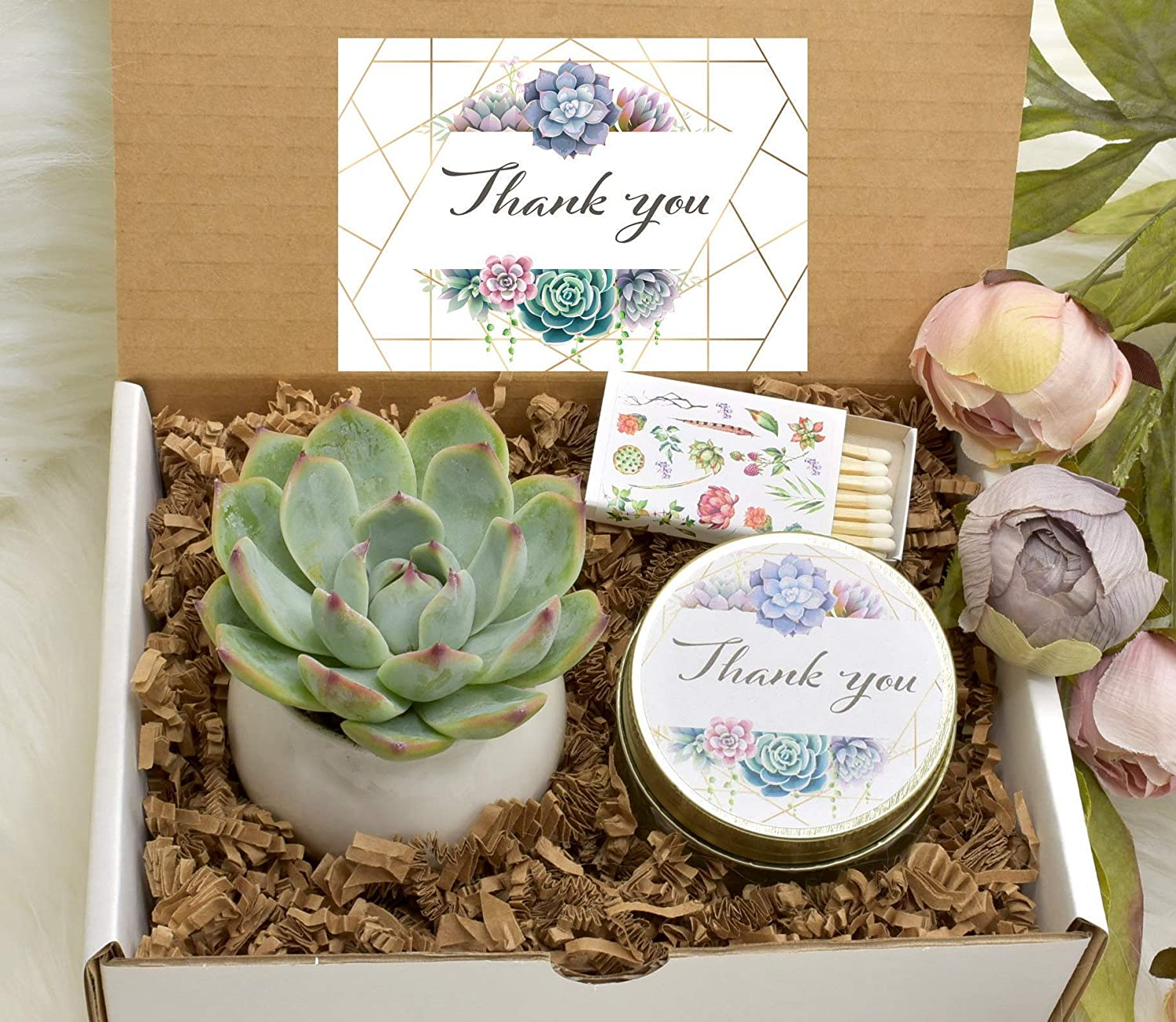 Boss Lady Gift Box Succulent Gift Box Birthday Gift For Boss Spa Gift Box Care Package Colleague Gift For Her Live Succulent Sympathy Gift