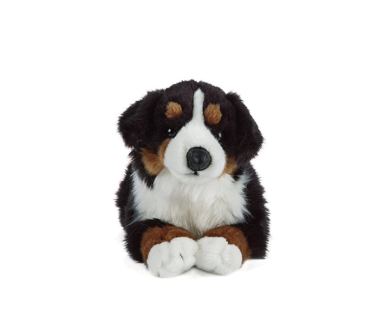 Amazon Com Living Nature Soft Toy Bernese Mountain Dog 35cm