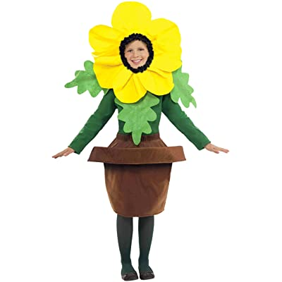 Forum Novelties Sunny Blossom Costume, One Size: Toys & Games