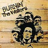 Burnin' [LP]