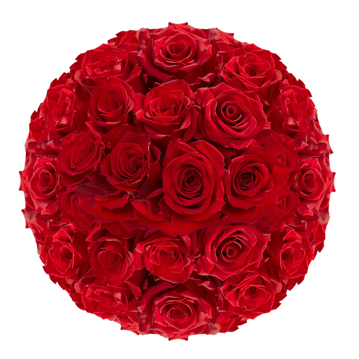 GlobalRose Red Roses- Fresh Flowers Express Delivery- 100 Stems by GlobalRose