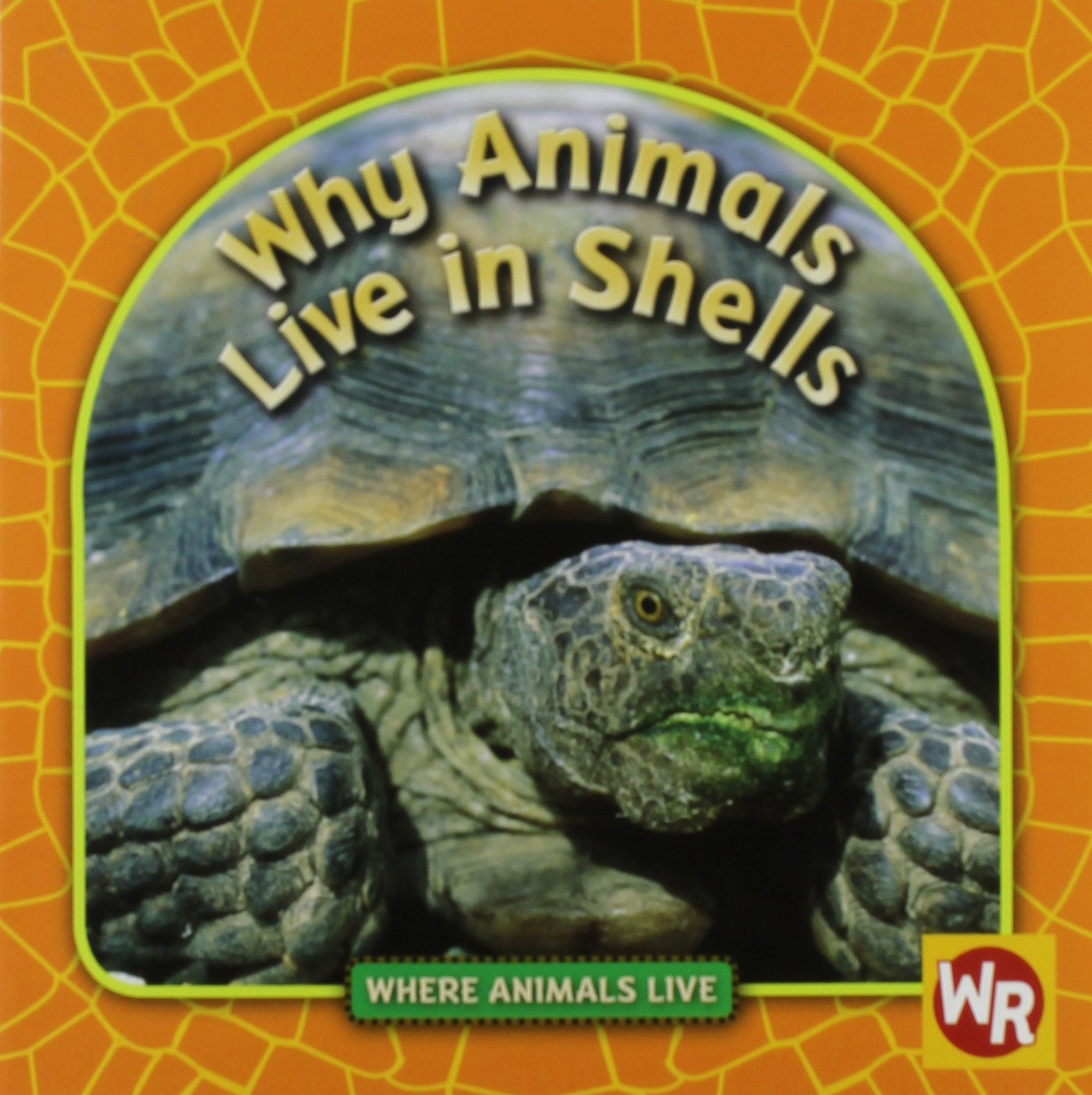 Why Animals Live in Shells (Where Animals Live) by Weekly Reader/Gareth Stevens Pub