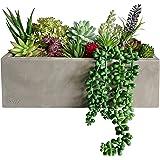 GreenBoxx Artificial Succulent Planter Arrangement Garden 16 Pcs - Faux Succulents Pre-Made Cement Box Artificial Plant…