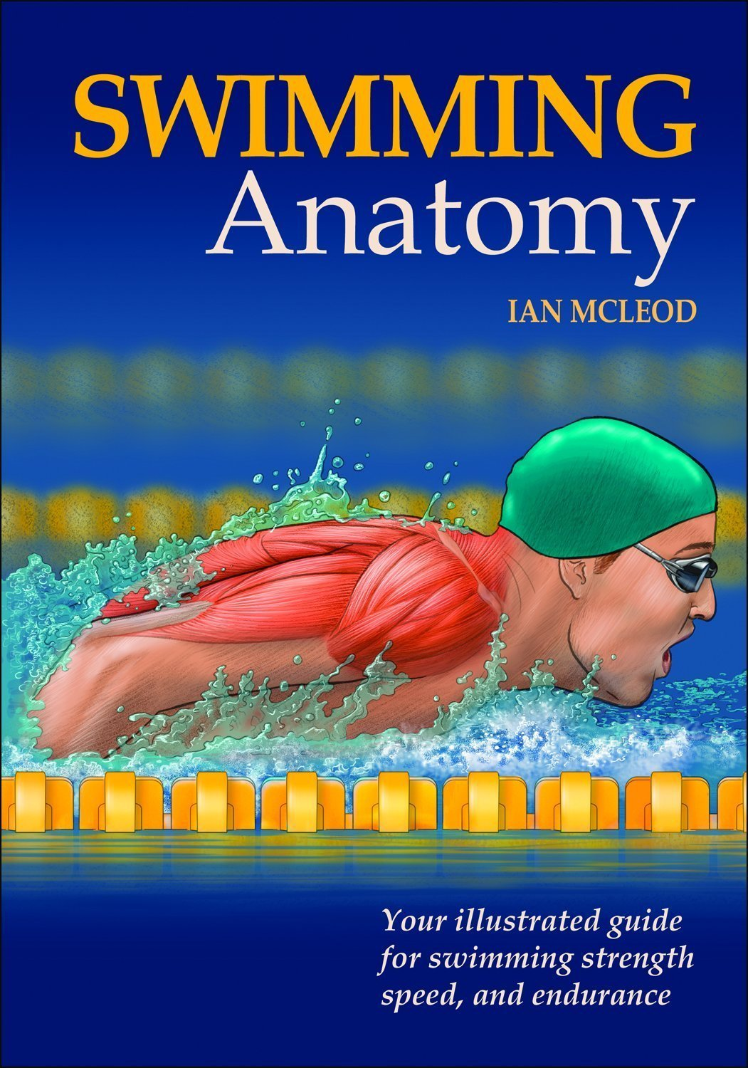 Swimming Anatomy: Your Illustrated Guide for Swimming Strength ...