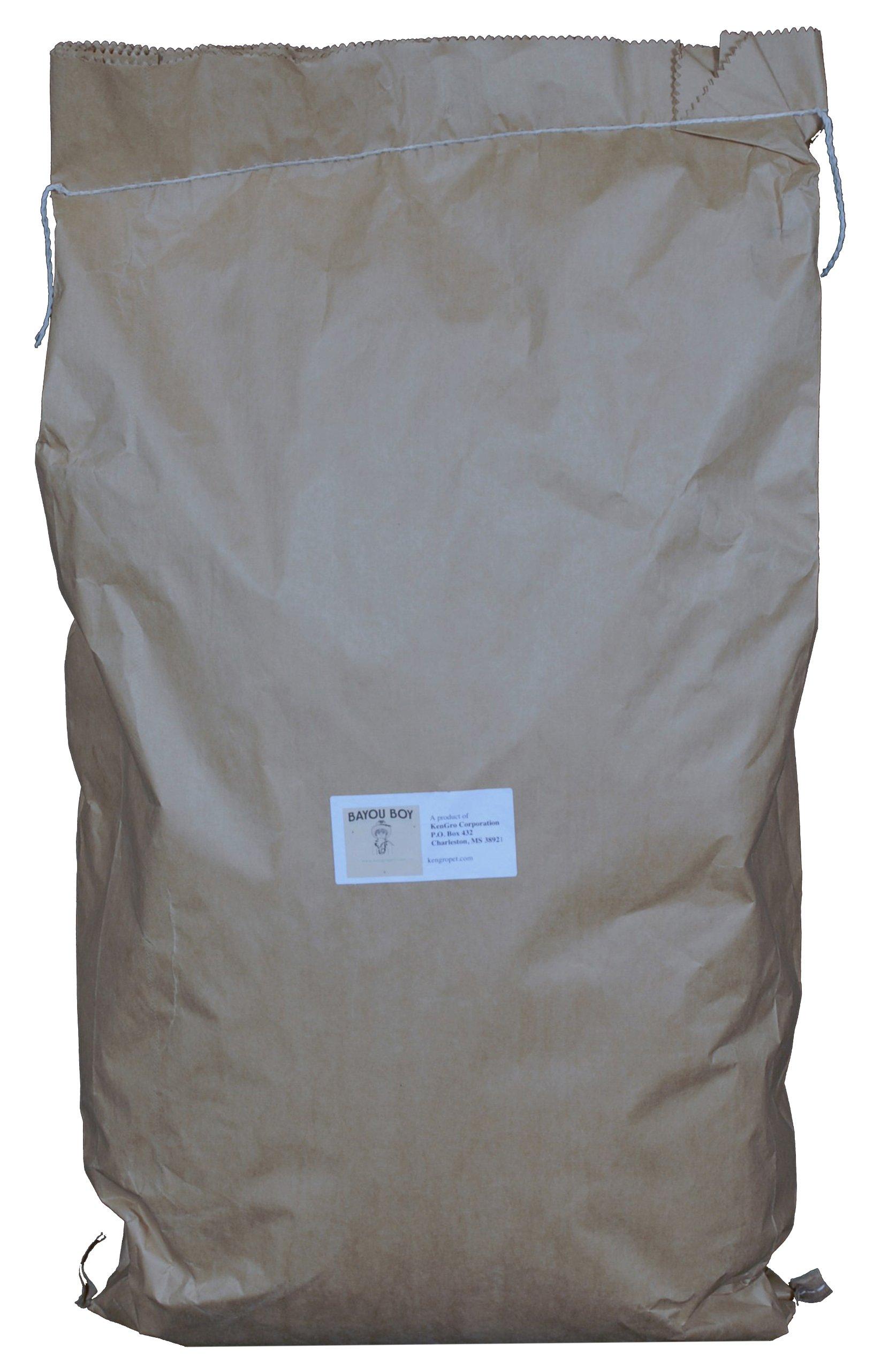 Bayou Boy All Natural Reptile Bedding Bag, 50-Quart