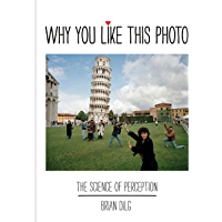 Why You Like This Photo: The science of perception book cover