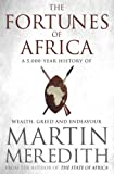Fortunes of Africa: A 5,000-Year History of Wealth, Greed and Endeavour