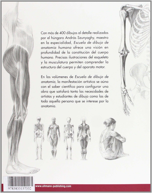 Escuela de dibujo de anatomía humana: Amazon.es: András Szunyoghy ...