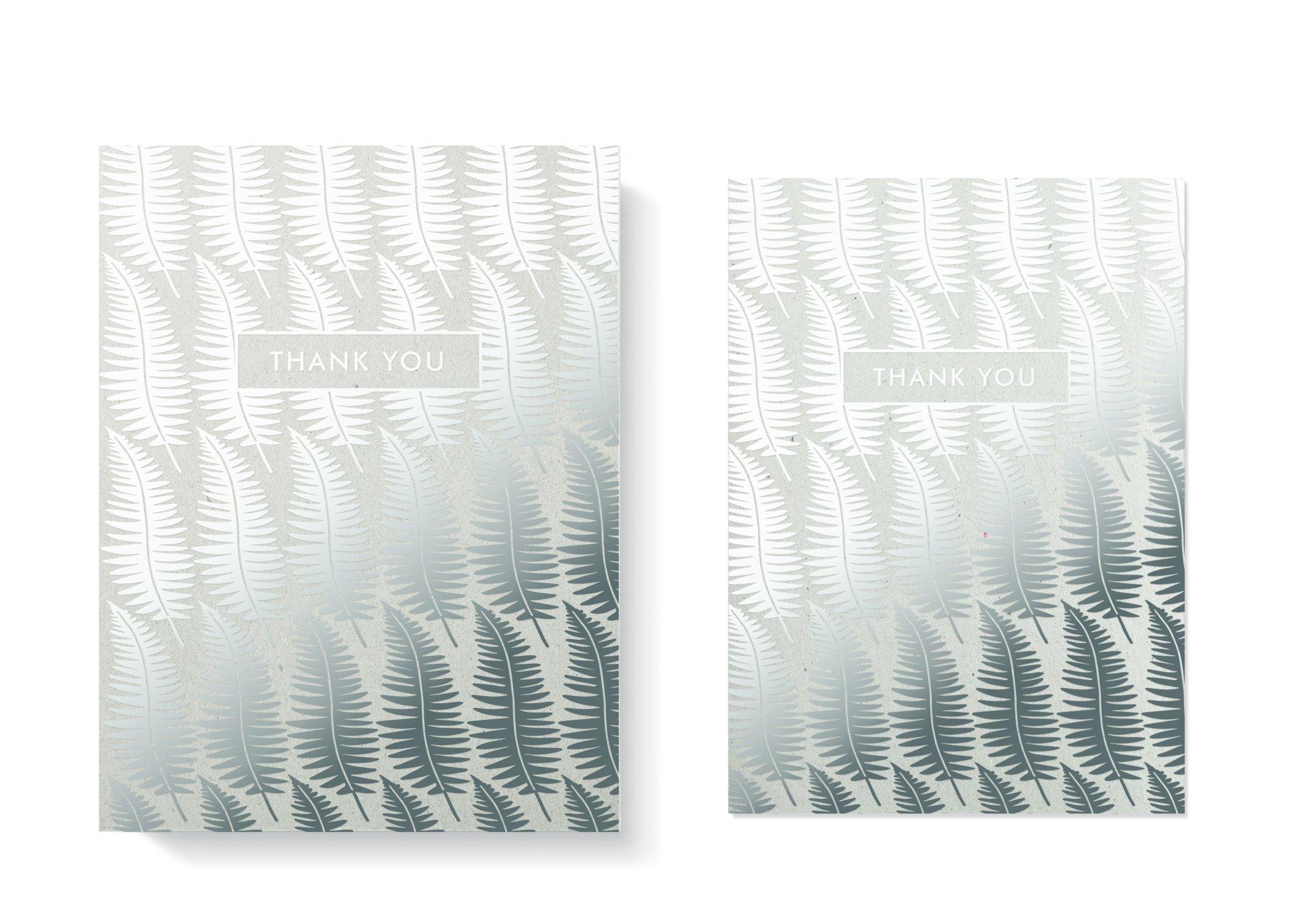 FRINGE STUDIO Silver Ferns Boxed Thank You Notes, 4.125''x6'', 8 Cards & Envelopes (909002)