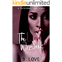 The Love We Seek: A Forbidden Love Story (The Love Series Book 1)