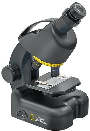 Microscopio National Geographic 40-640x con Soporte para ...