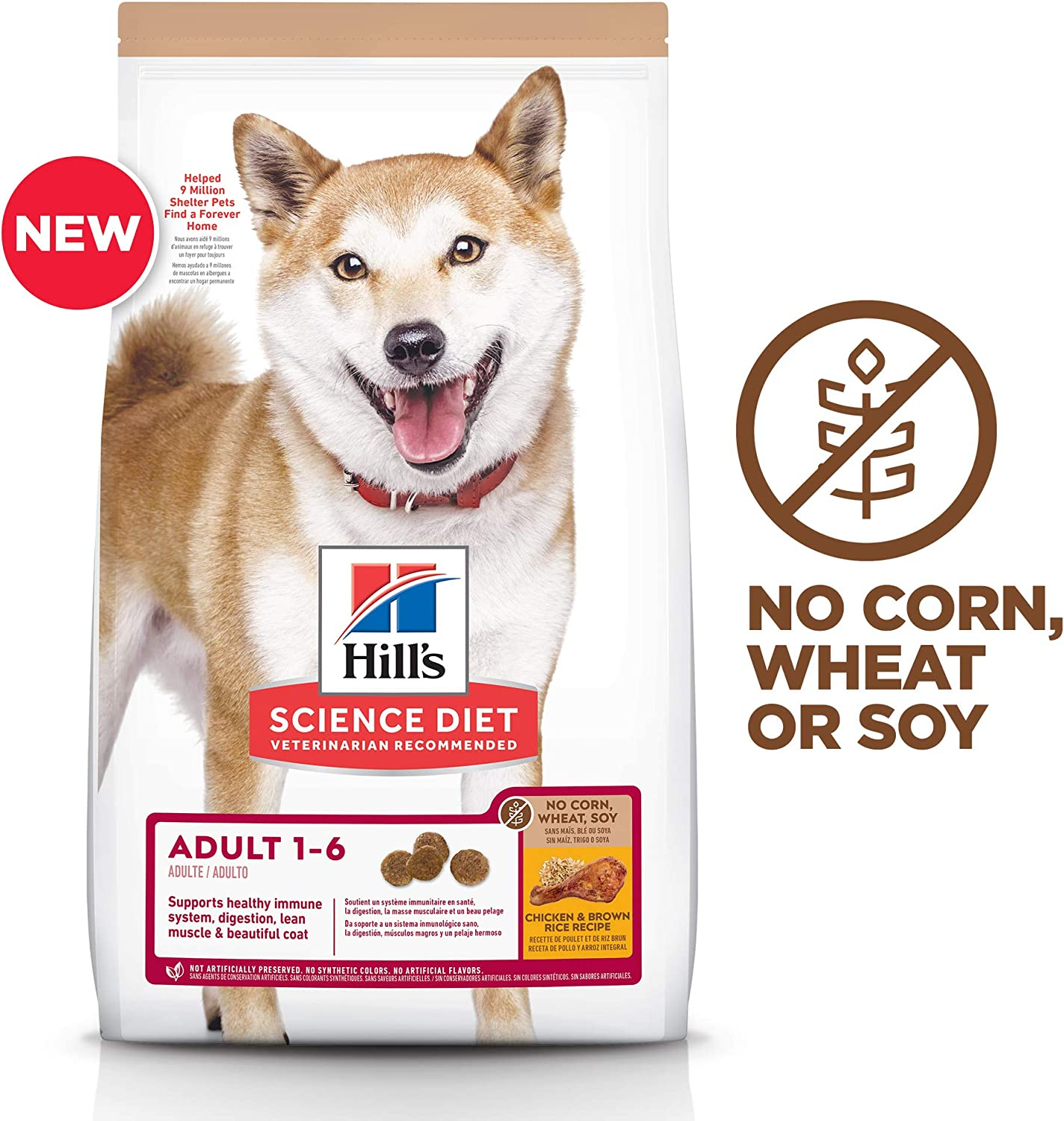 Hill's Science Dry Best Dog Food to prevent gas
