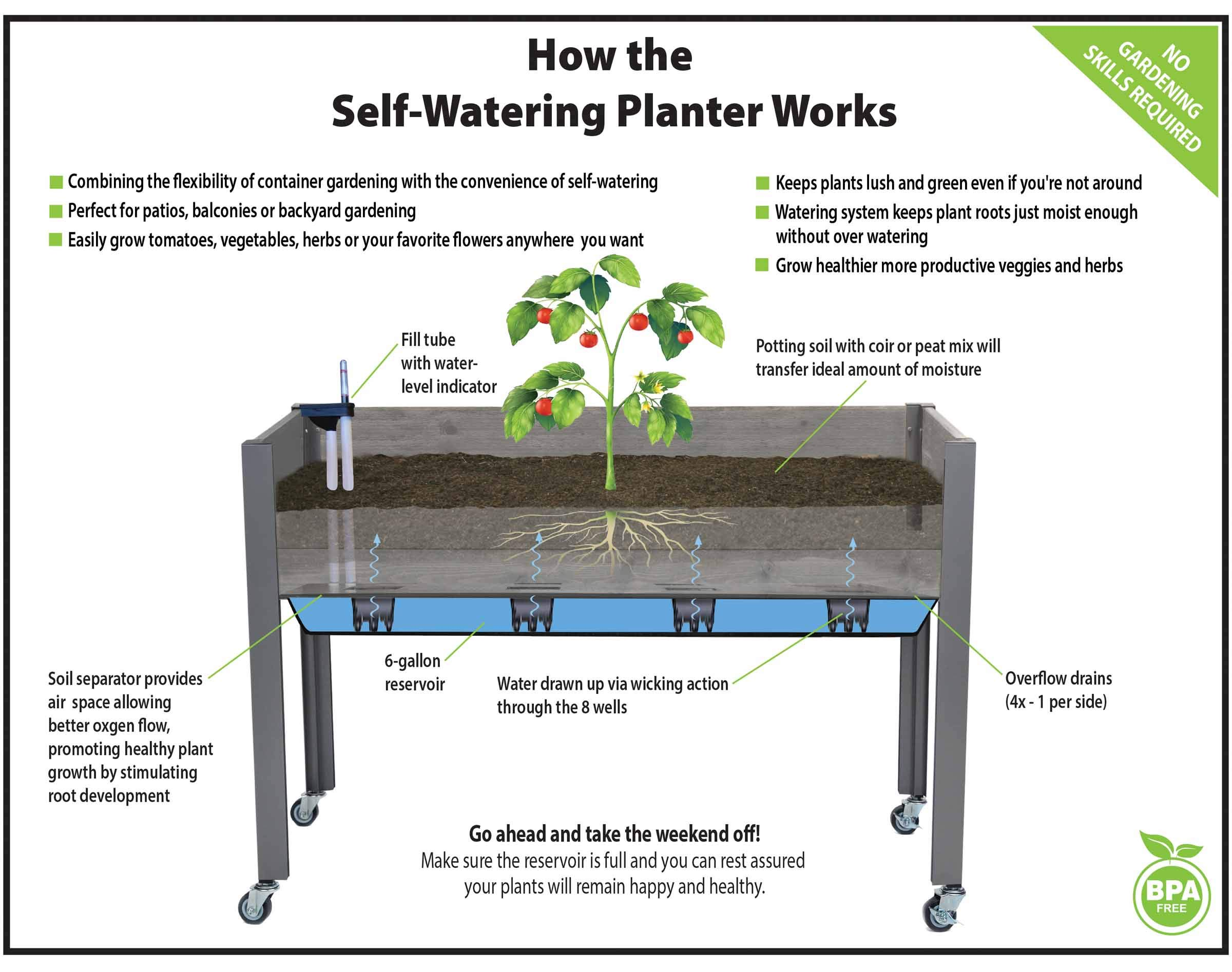 CedarCraft Self-Watering Elevated Spruce Planter (21'' x 47'' x 32''H) - The Flexibility of Container Gardening + The Convenience of a self-Watering System. Grow Healthier, More Productive Plants. by CedarCraft (Image #4)