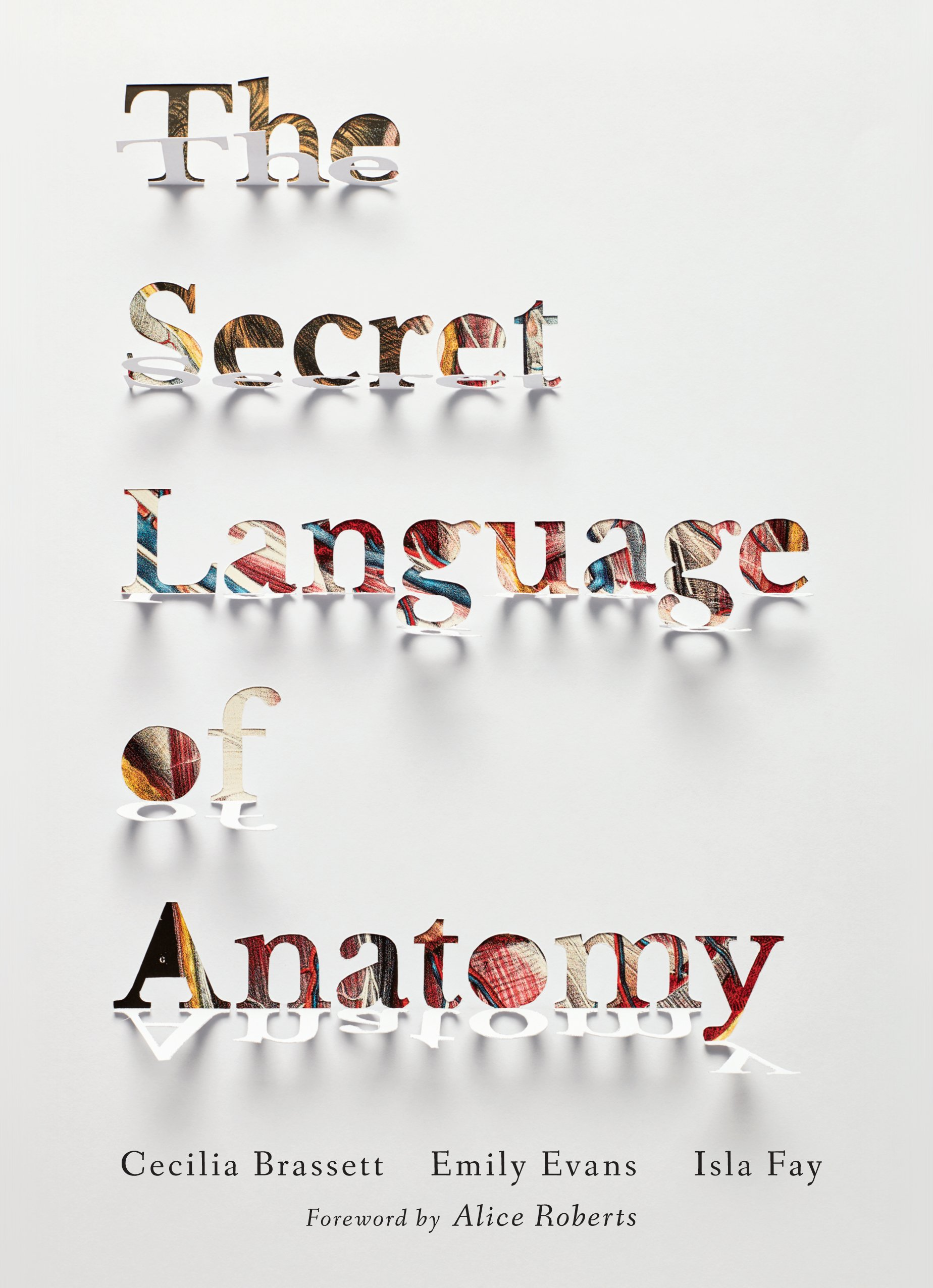 The Secret Language of Anatomy: Amazon.co.uk: Cecilia Brassett ...