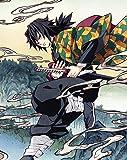 鬼滅の刃 2(完全生産限定版) [DVD]