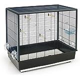Savic Primo 60 Cage pour Petit Oiseau Noir 80 x 50 x 70 cm