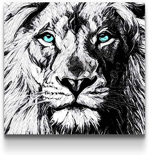 Black And White Lions Animal Landscape Wall Art Large Poster Canvas Pictures