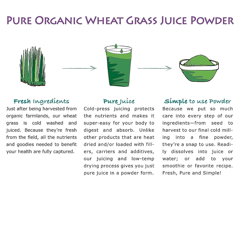 pure synergy organics wheat grass juice powder usa 5 3