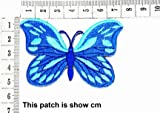 Blue Butterfly Insect Boho Hippie Retro Love Peace