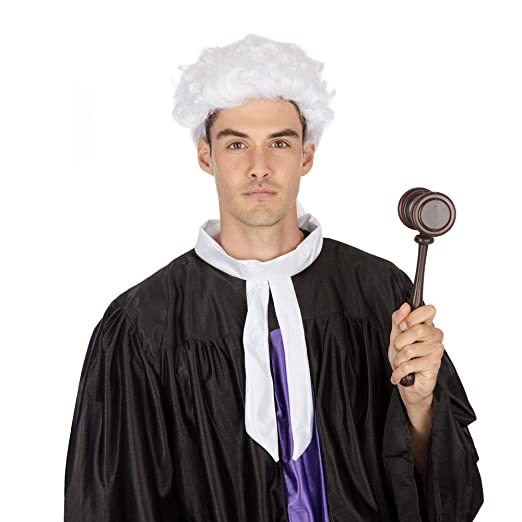 White Court Wig Black Bow 20S Barrister Lawyer Fancy Dress ...
