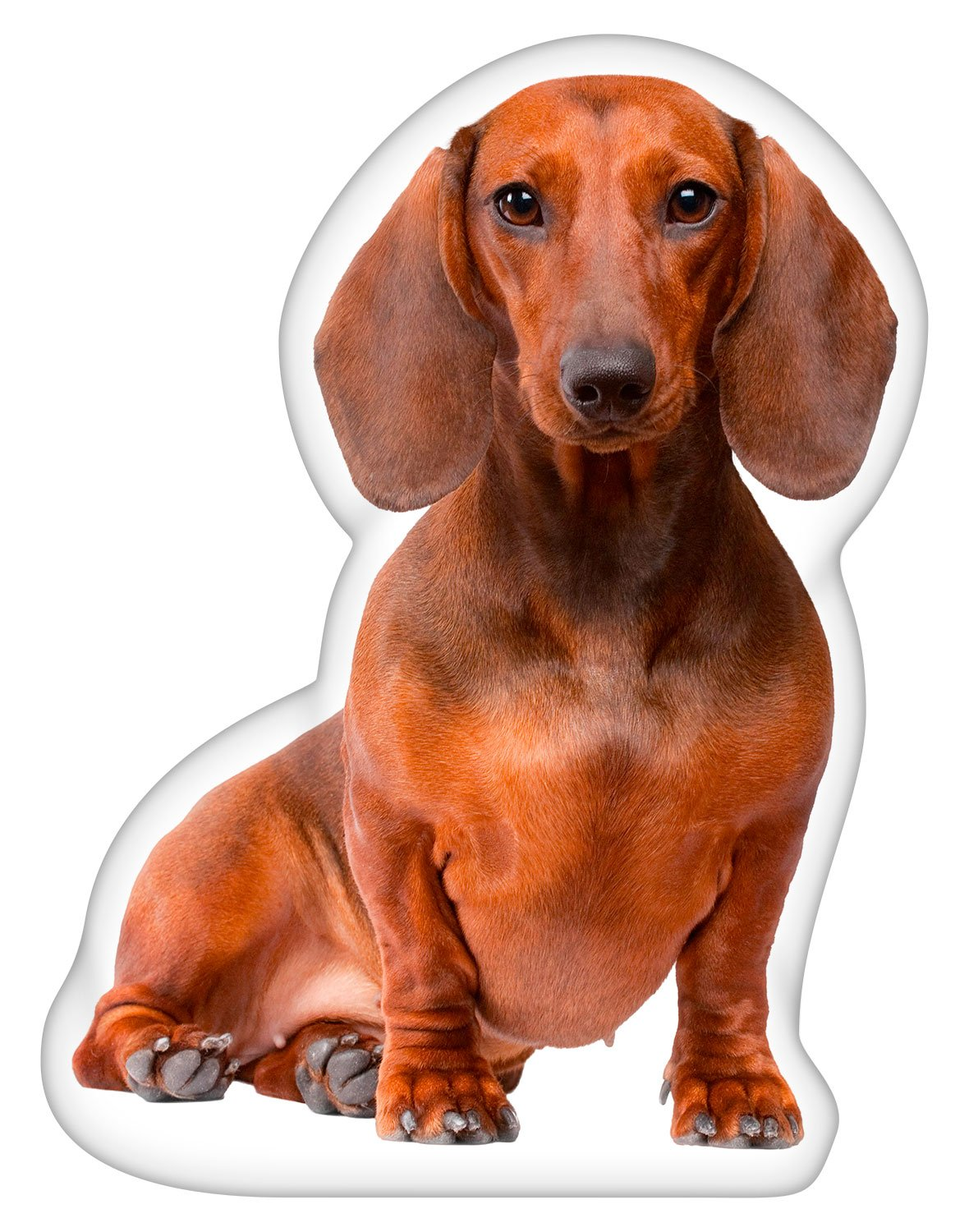 iLeesh Dachshund Brown_Shaped Pillow
