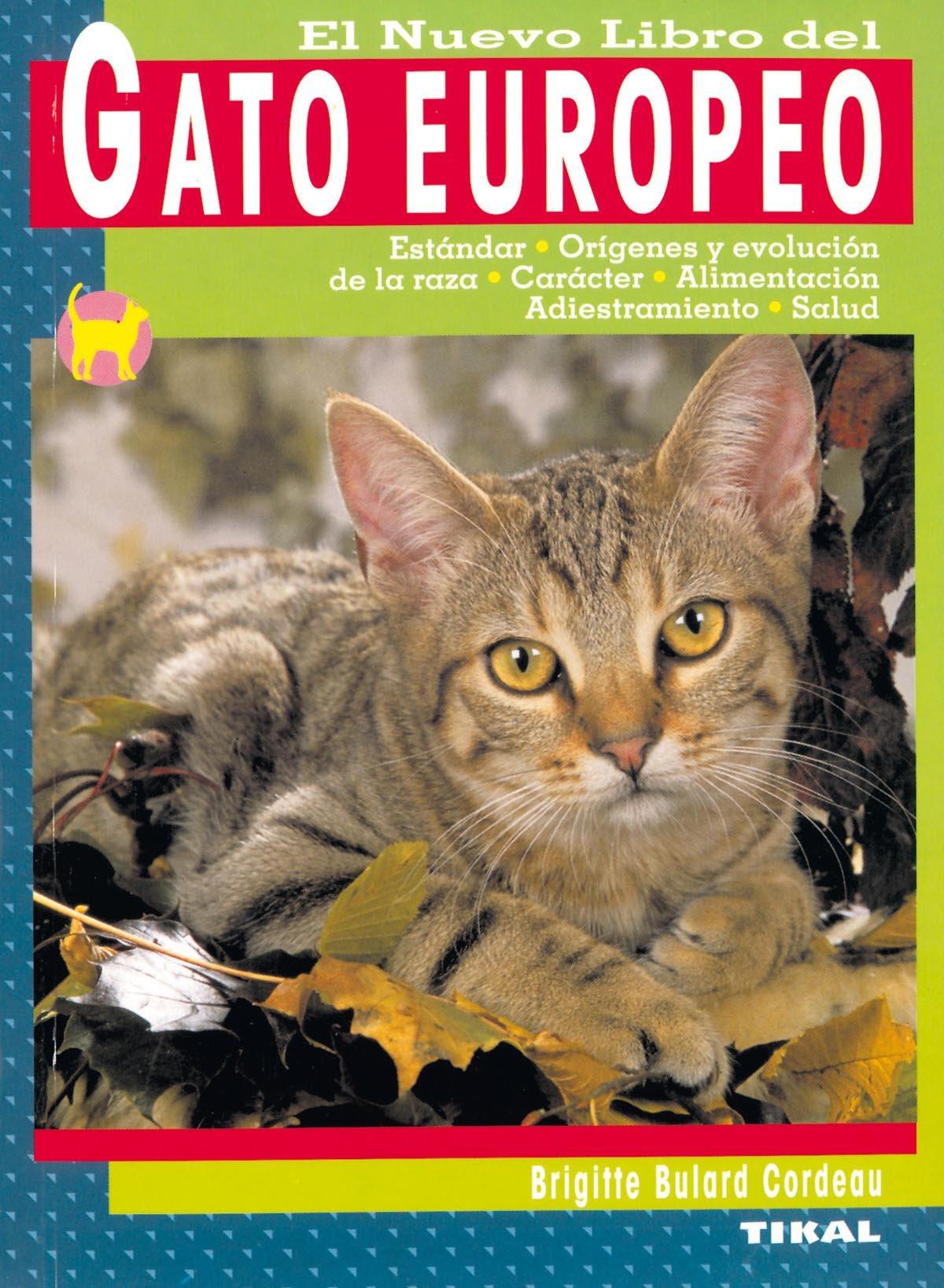 El Nuevo Libro del Gato Europeo: Estandar, Origenes y Evolucion d e la Raza, Caracter, Alimentacion, Adiestramiento y Salud (Spanish) Paperback