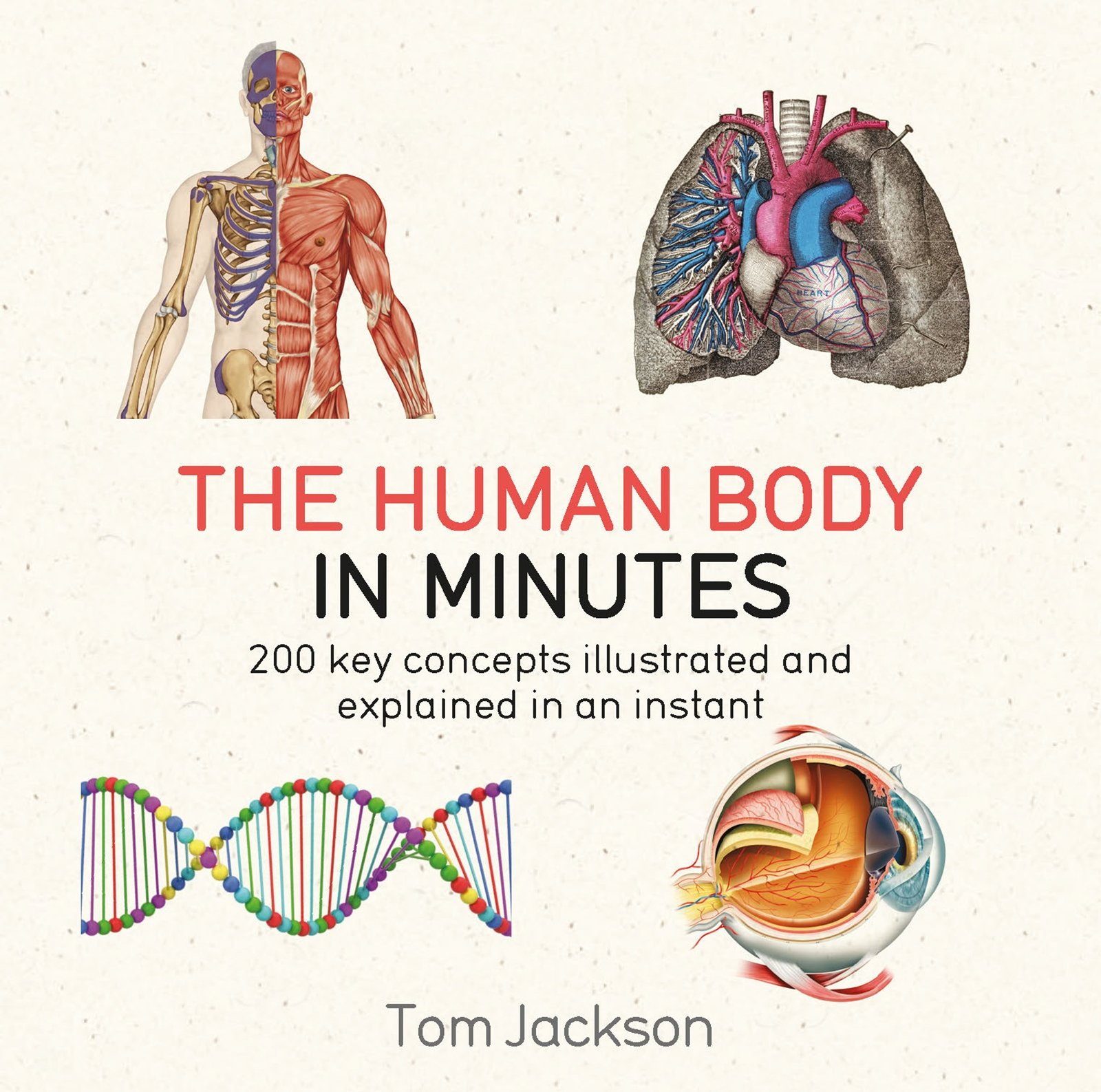 The Human Body In Minutes  English Edition