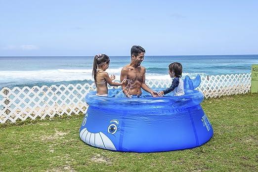 JILONG - Piscina para niños (JL017399NPF -P81): Amazon.es ...