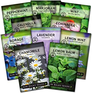 Sow Right Seeds - Large Herbal Tea Garden Seed Collection - Lemon Balm, Mint, German Chamomile, Lavender, Echinacea, Lemon Mint, Calendula, Borage, Marjoram, Peppermint Non-GMO Heirloom Seeds