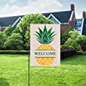 Yonfro Welcome Pineapple Fall Garden Flag