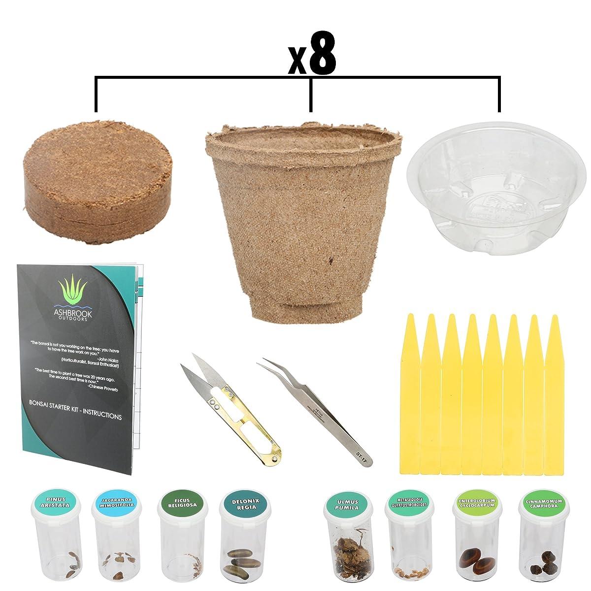 Ashbrook Outdoors Bonsai Starter Kit - Everything You Need to Grow 8 Colorful Bonzai Trees - Complete Gardening Set