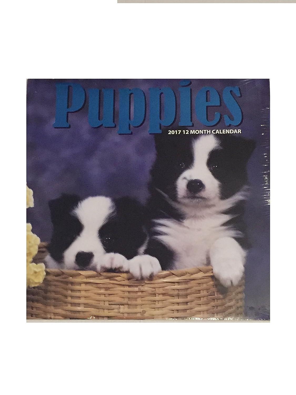 Puppies 2017 calendario de de calendario 12 meses 2c3cac