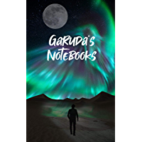 Garuda's notebooks: The deafening silence (English Edition)