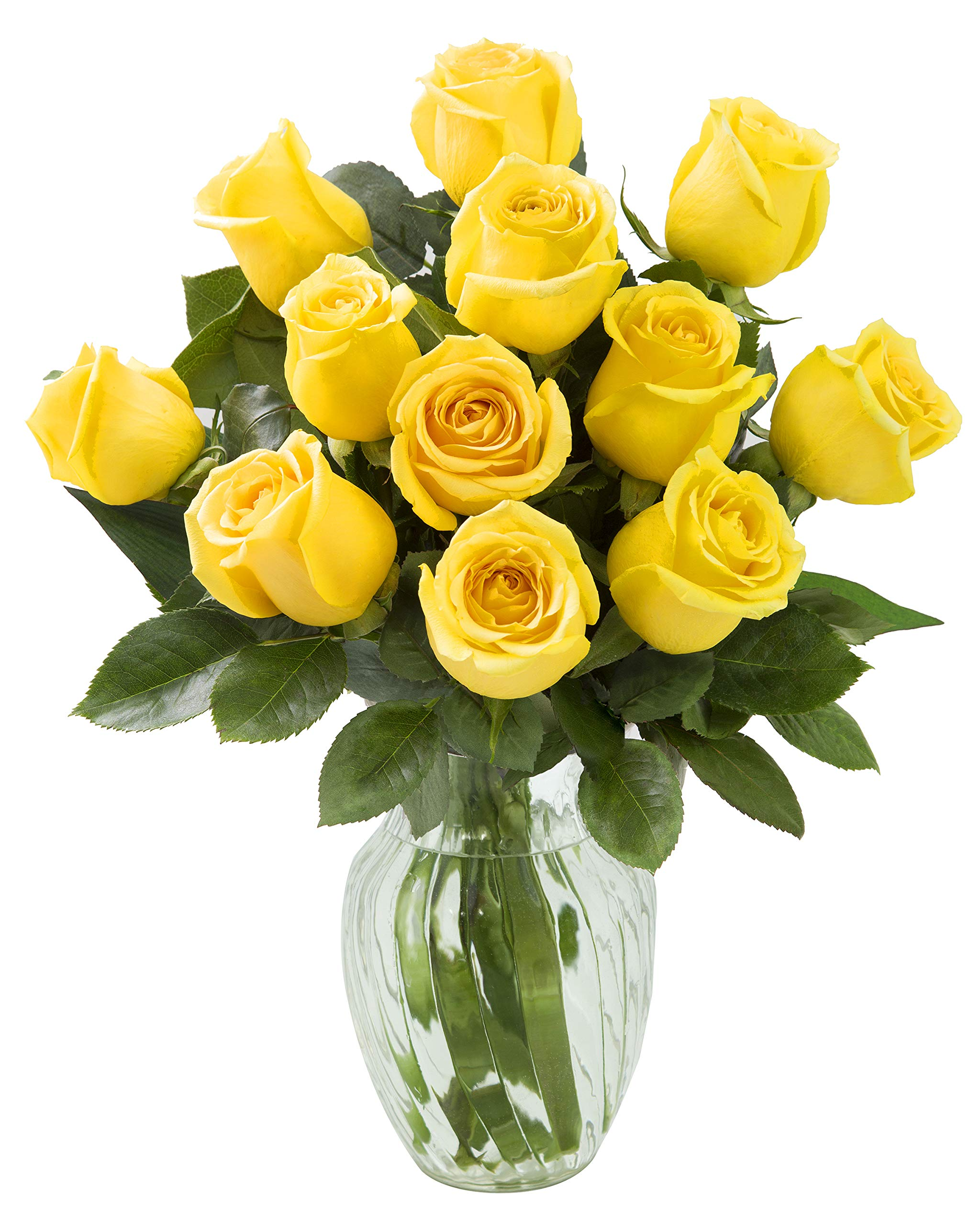 KaBloom Bouquet of 12 Fresh Yellow Roses (Farm-Fresh, Long-Stem) with Vase by KaBloom