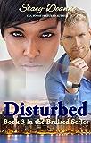 Disturbed  (The Bruised Series Book 3)