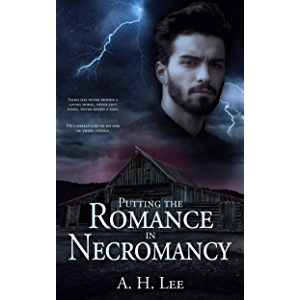 Putting the Romance in Necromancy: a Knight and the Necromancer Prequel Story (The Knight and the Necromancer)