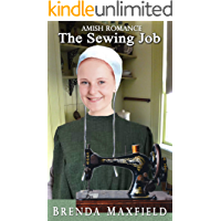 The Sewing Job (Willa's Story Book 2)