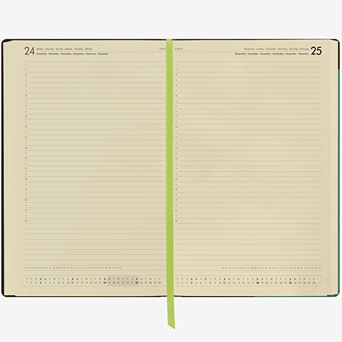 Amazon.com : Links ag121732 Agenda 12 Months, Turquoise ...