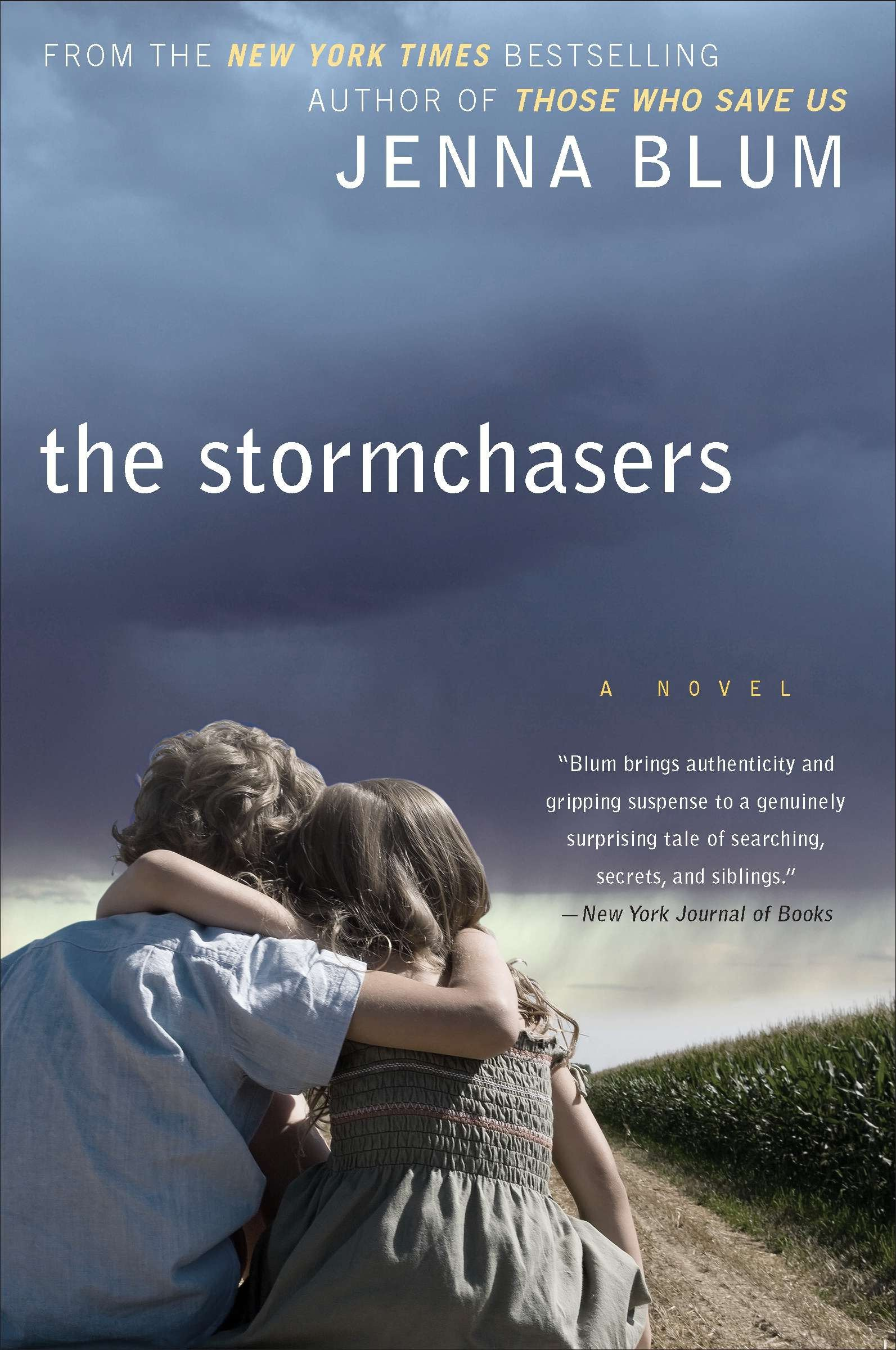 Download The Stormchasers: A Novel PDF