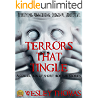 Terrors That Tingle: A collection of short horror stories (English Edition)