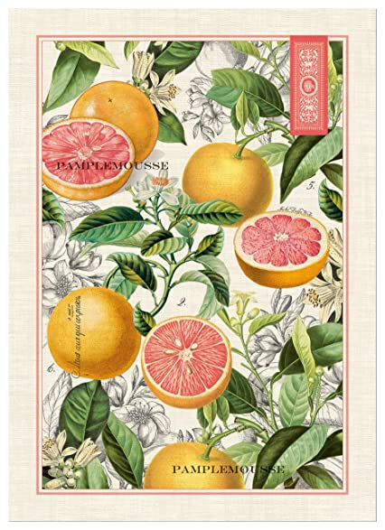 Michel Design Works Pink Grapefruit Cotton Kitchen Towel, Multicolor