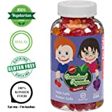 Graceland Organics 90 Kosher, Halal Gummy Vitamins For Kids 2+ Years Old, Nutritional Supplement, Healthy Natural Colors & Flavors Multi-Vitamin