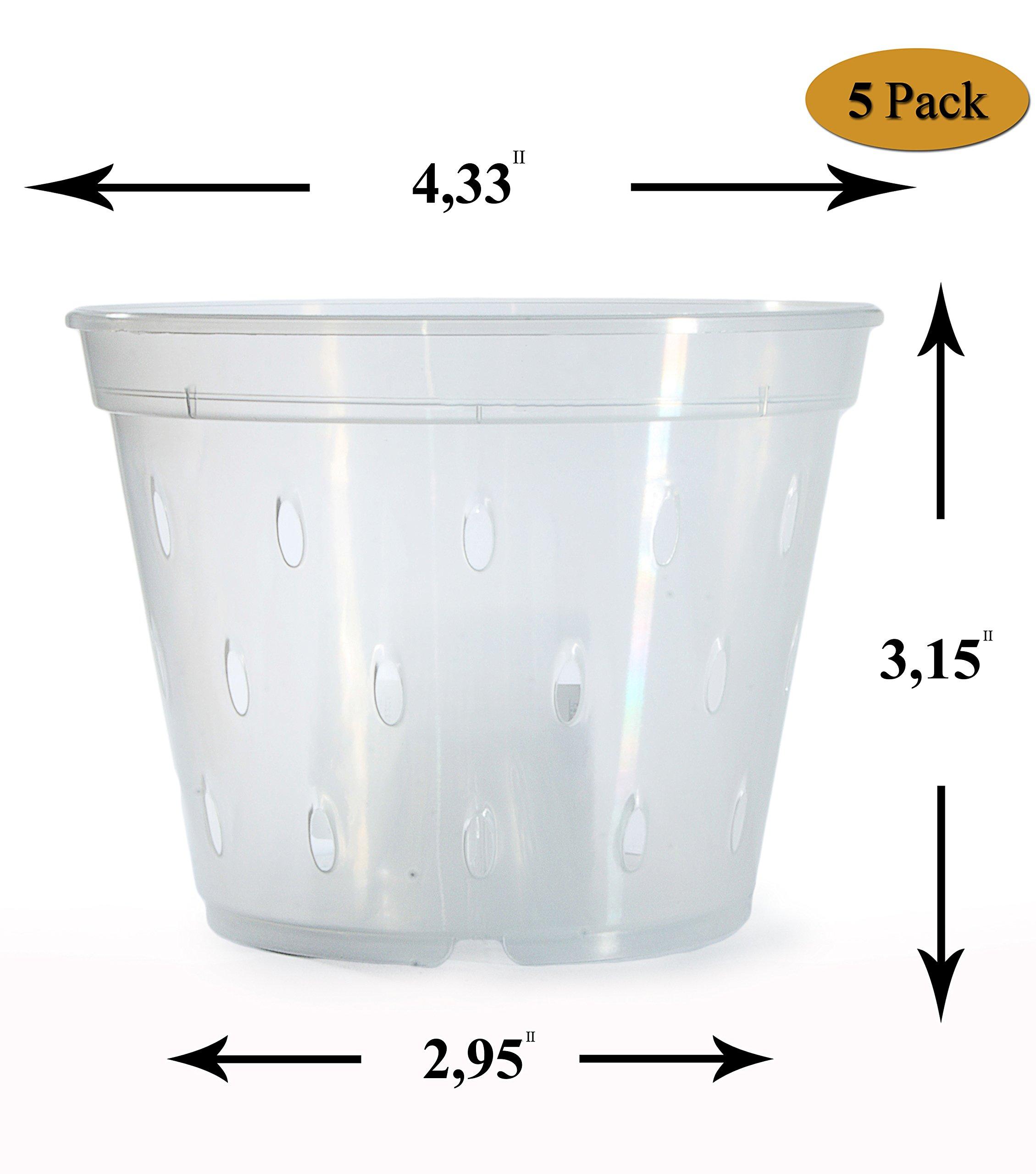 Orchid Pots With Holes Plastic-Orchid Pot-Clear Orchid Pot-4.5 inch-Orchids Pot-Plastic Orchid Pots-Pots For Orchids-Slotted Orchid Pot-Clear Plastic Pot-Orchid Flower Pot-Orchid Plant Pot-5 Pack by DAN Market
