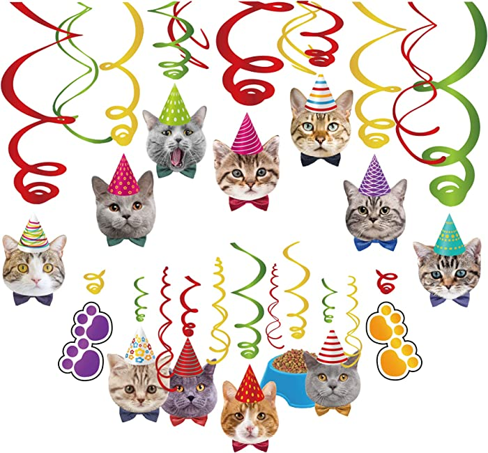 Top 9 Kitty Birthday Decor