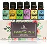 Blackstone Canadian 100% Natural Essential Oils Set of 6 - Eucalyptus, Tea Tree, Lavender, Peppermint, Lemongrass, Sweet Orange