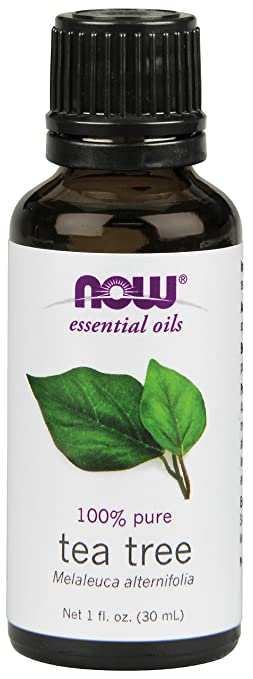 NOW Solutions Tea Tree Essential Oil, 1-Ounce